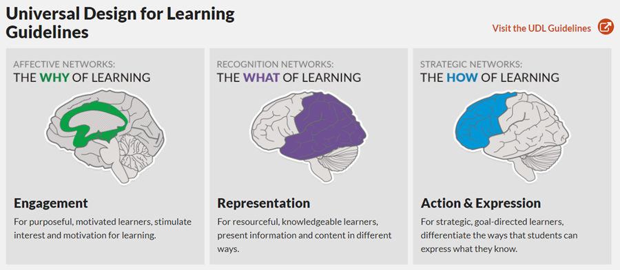 Universal Design for Learning Guidelines. Visit cast.org to view the framewrok at: http://udlguidelines.cast.org/?utm_medium=web&utm_campaign=none&utm_source=cast-about-udl